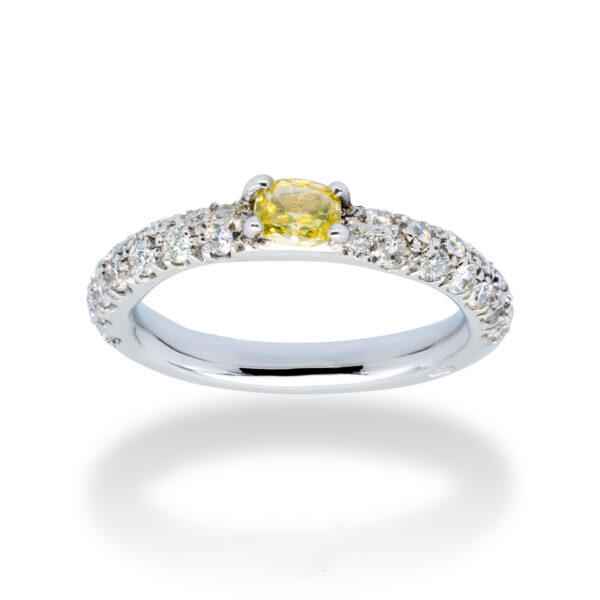 d'Avossa Ring in 18kt white gold with a pavé of white diamonds and a central fancy natural diamond (4)