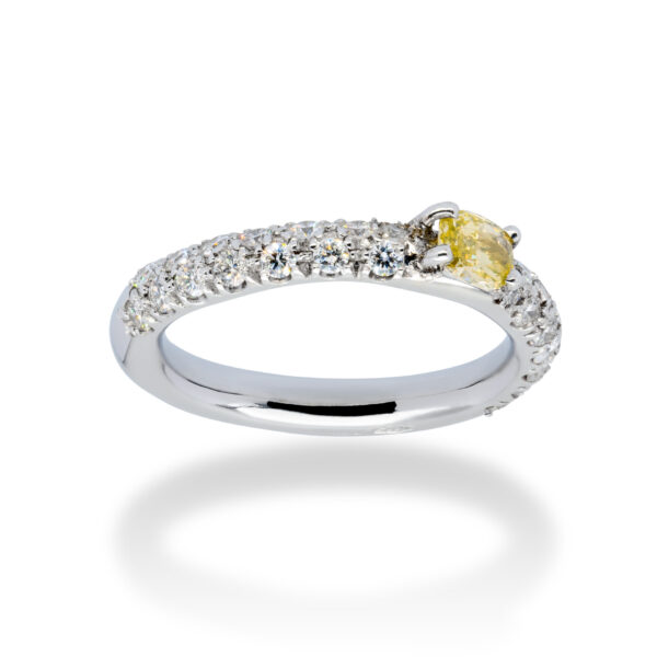 d'Avossa Ring in 18kt white gold with a pavé of white diamonds and a central fancy natural diamond (3)