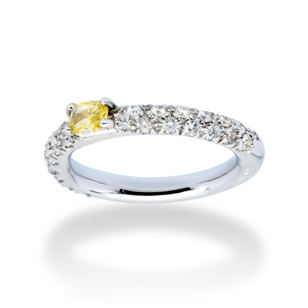 d'Avossa Ring in 18kt white gold with a pavé of white diamonds and a central fancy natural diamond (2)