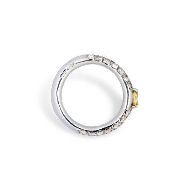 d'Avossa Ring in 18kt white gold with a pavé of white diamonds and a central fancy natural diamond (1)
