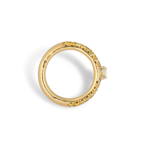 d'Avossa Ring 18kt yellow gold with a pavé of fancy yellow natural diamonds and a central fancy natural diamond (1)